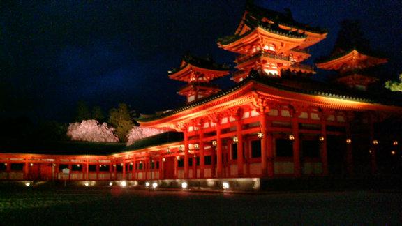 平安神宮夜桜