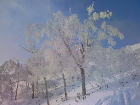 トマム⑥樹氷