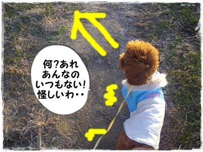 nagai2.jpg