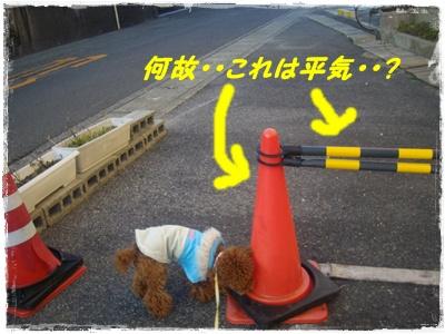 nagai4.jpg