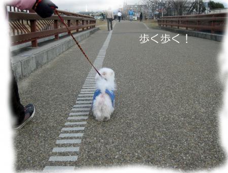 歩く歩くconvert_20120212210612