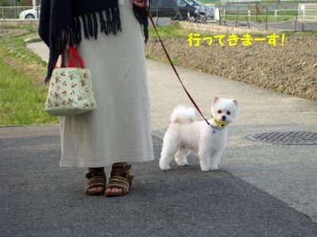 陦後▲縺ヲ縺阪∪繝シ縺呻シ\convert_20120424221636