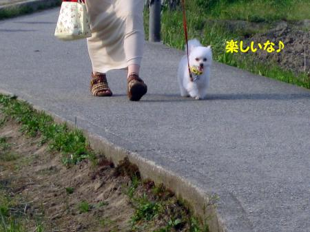 讌ス縺励>縺ェ_convert_20120424222030