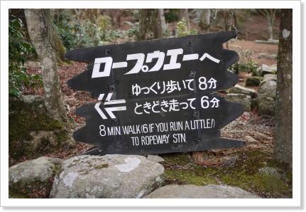 1212miyajima4.jpg
