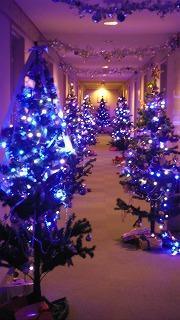 6 クリスマスツリー