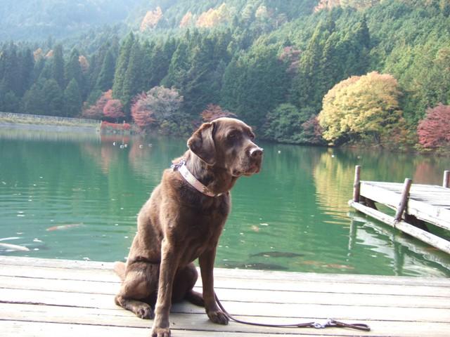 南伊奈ヶ湖は綺麗