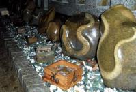 2013初詣金蛇水神社8蛇石