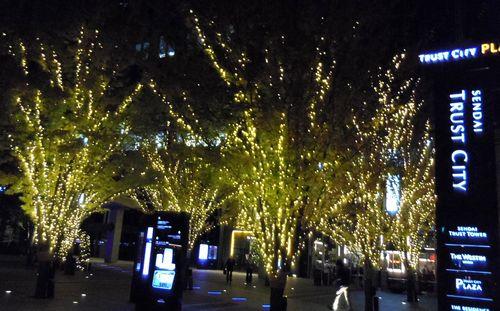 仙台トラストシティ2012イルミネーション3