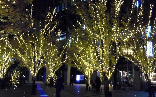 仙台トラストシティ2012イルミネーション4