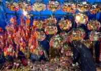 どんと祭2013大崎八幡宮11屋台