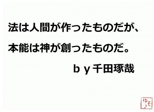 001_convert_20120404202824.jpg