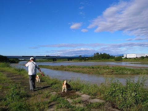 2011-09-22 台風一過の朝 163
