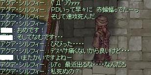 2010_11_23_4.jpg