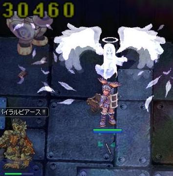 2011_4_29_1.jpg