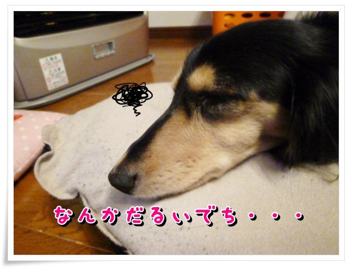10_20111221145405.jpg