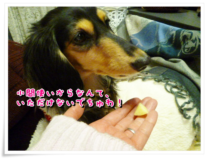 10_20111227160943.jpg