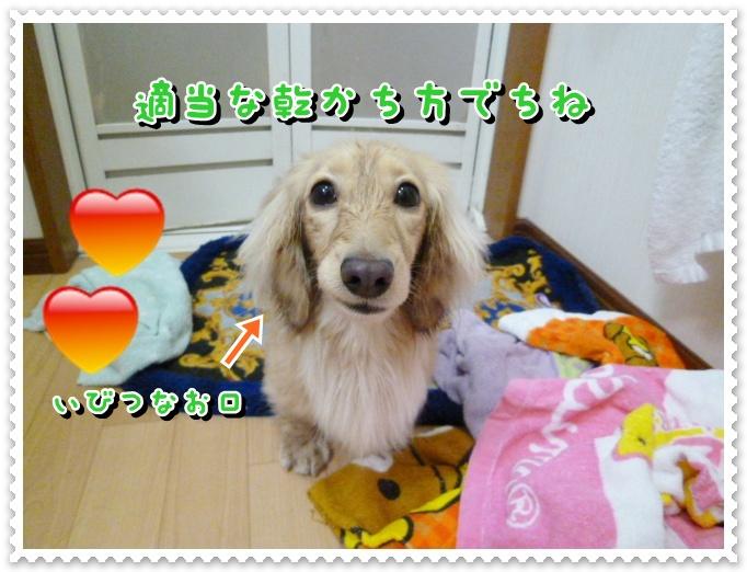 10_20120319105436.jpg