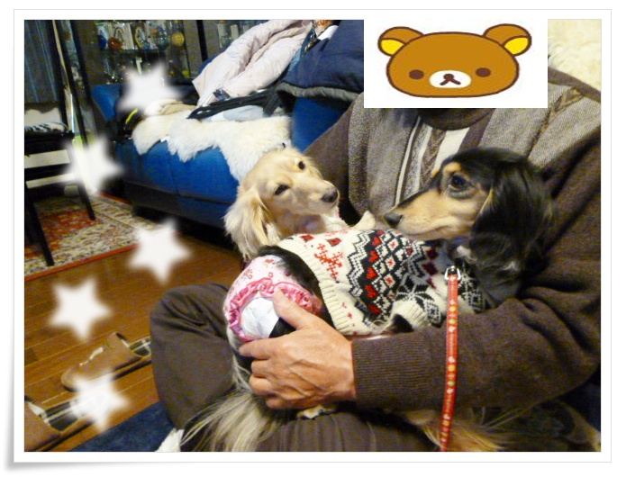 12_20120106152331.jpg