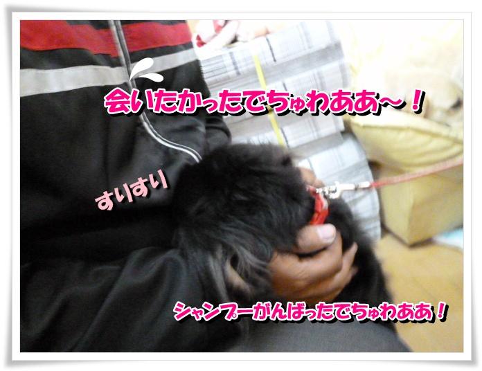 2_20111125141914.jpg
