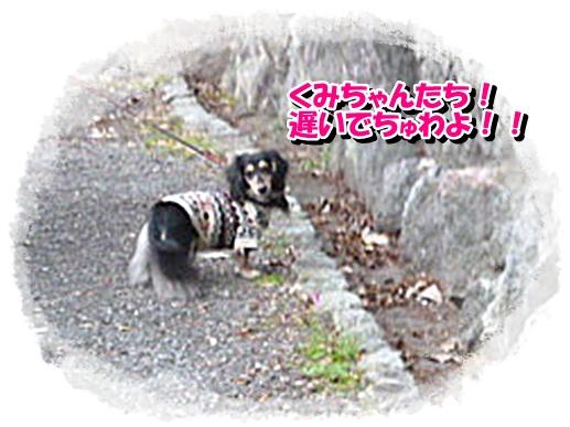 2_20111129151929.jpg