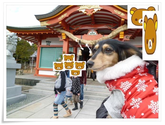 2_20120113144249.jpg