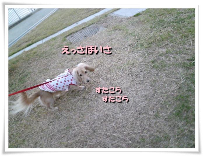 4_20111121143800.jpg