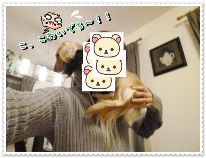 4_20120120112632.jpg