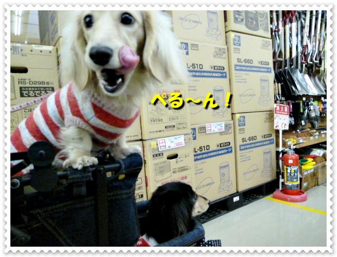 5_20111130144100.jpg