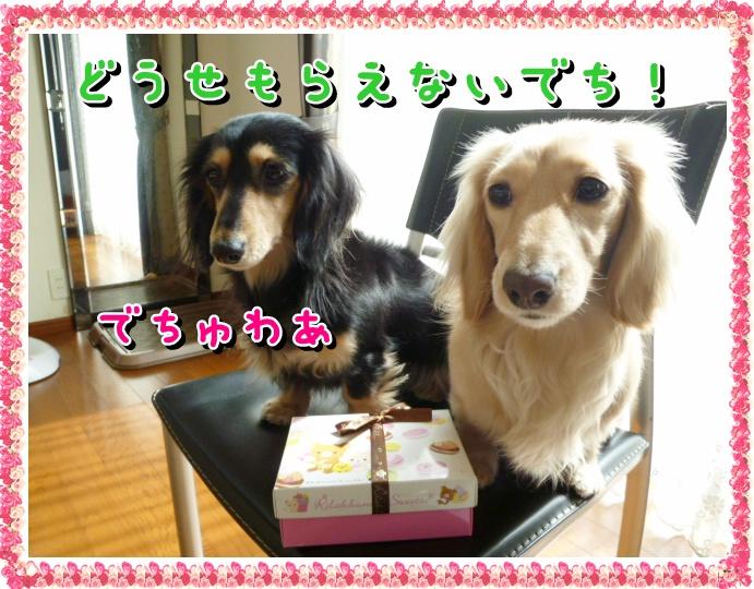 5_20120316154214.jpg