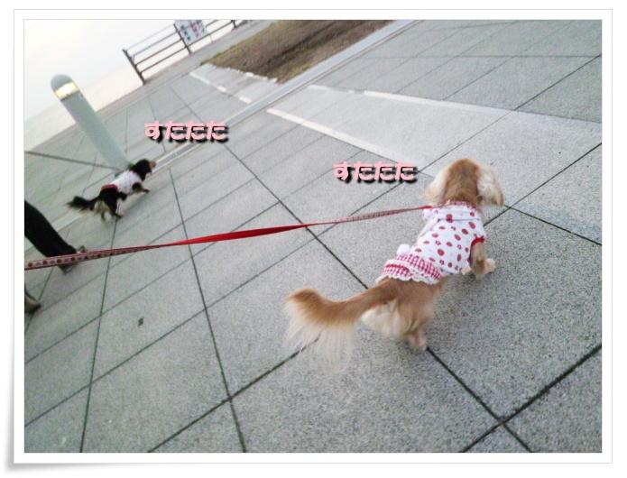 6_20111121143757.jpg
