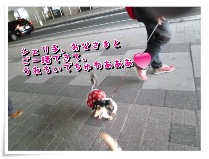 6_20120113144248.jpg