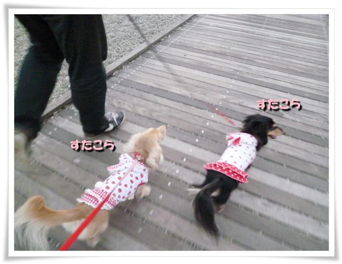 7_20111121143757.jpg