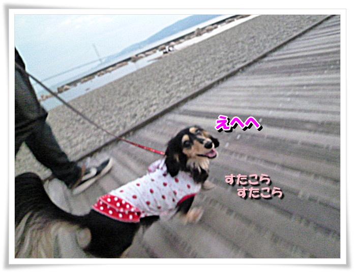 8_20111121143719.jpg