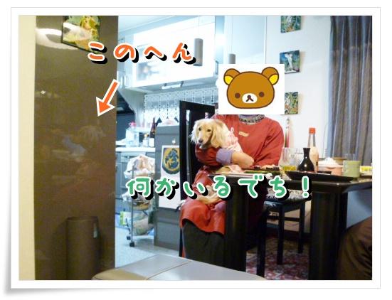 8_20120106152332.jpg