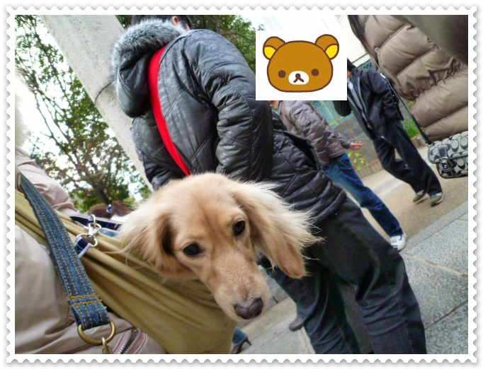 8_20120116135647.jpg
