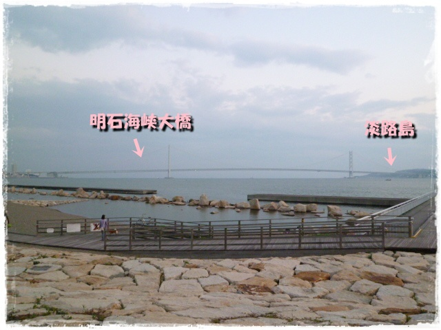 9_20111121143719.jpg