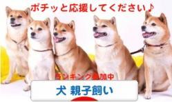 1_20110831081000.jpg