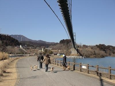橋の下の新しい道