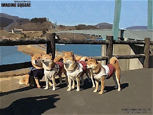 宮ケ瀬 水の郷大吊り橋 (ガッシュ)