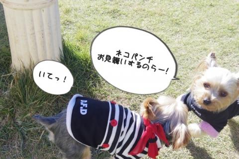 2013お誕生会7