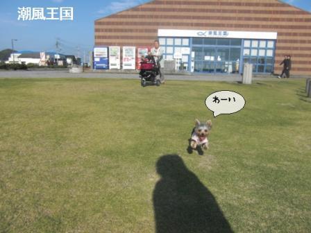chikura5.jpg