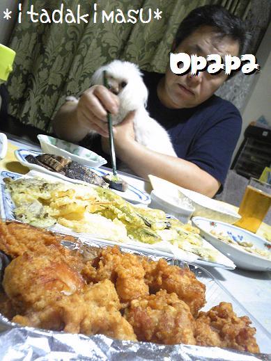 Image709a_20110922011807.jpg