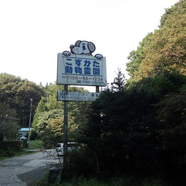 IMGP0124.jpg