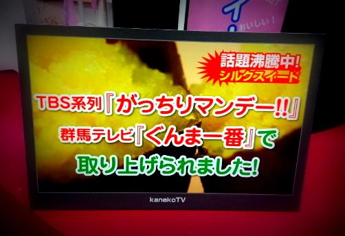 shiruku-gacchiri.jpg