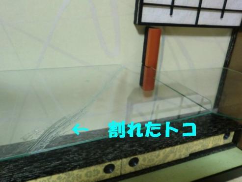 ガラスが~っ!