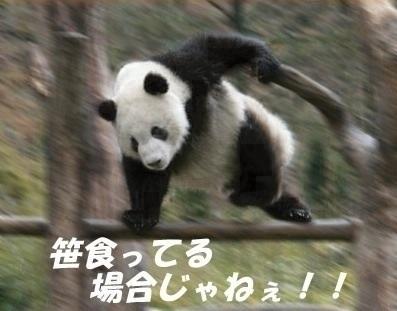 141204_028.jpg
