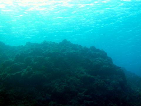20111124_08.jpg