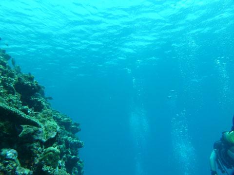 20111124_19.jpg