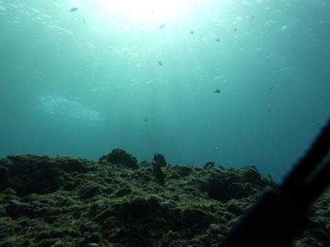 20111125_02.jpg