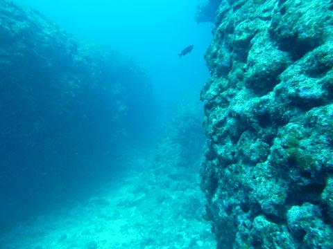 20111125_37.jpg